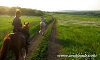 у Денисовской фермы