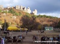 ферма Чудо Ослик на фоне Скалы Президентов