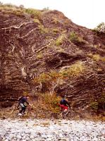обнажение складок таврических сланцев между Карабахом и Лазурным (Камыш-бурун)