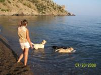 Летний отдых у моря с собаками, поселок Веселое, Судак, Крым