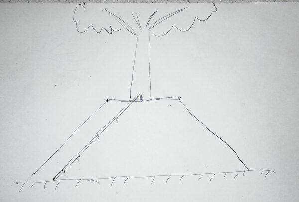 Вокруг дерева в скейтпарке можно сделать усеченную пирамиду из дерева, металла или бетона с коупингом и рейлом
